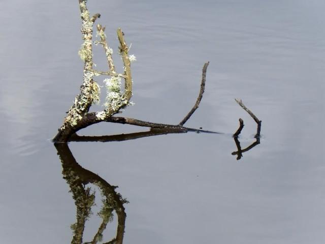 Concours photo « L'eau en Loir-et-Cher »