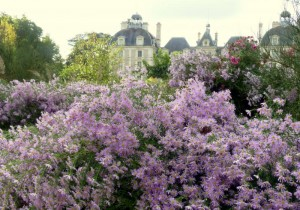 jardin4_cheverny_sologne_copyright_yseultcarre