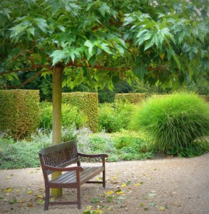 jardin5_cheverny_sologne_copyright_yseultcarre