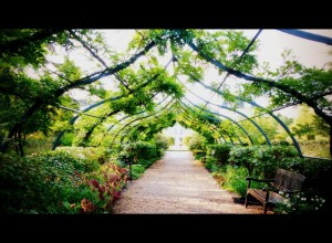 jardin_cheverny_sologne_copyright_yseultcarre