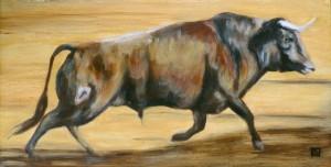 Taureau - Toro  © Yseult Carré