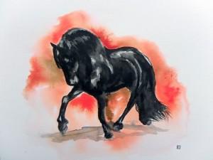 Frison noir  © Yseult Carré