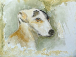 Lévrier greyhound © Yseult Carré