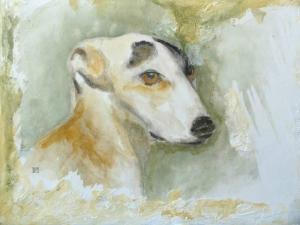 Lévrier greyhound © Yseult Carré