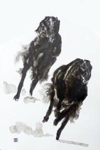 Barzoïs noirs