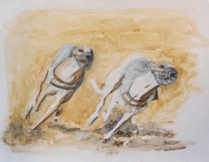 levriers-greyhounds-dapres-photo-arcadines-copyright-yseultcarre