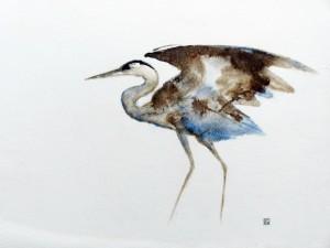 heron-bleu-2-copyright-yseult-carre