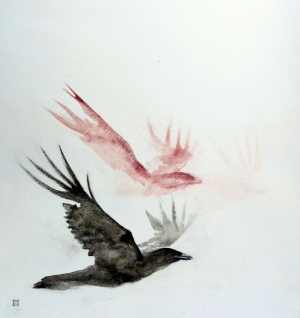 Corbeaux raven crows © Yseult Carré